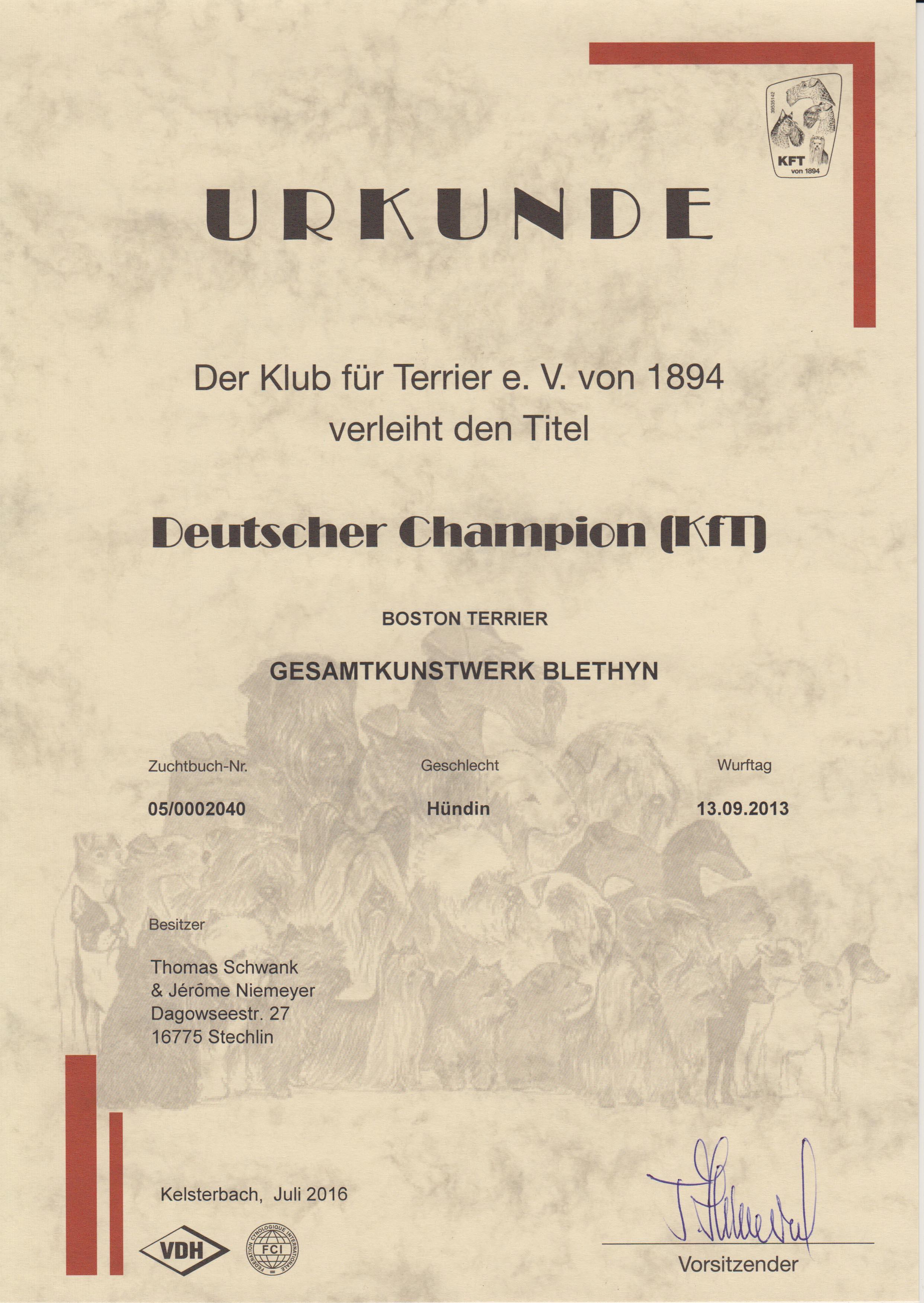 Gesamtkunstwerk Blethyn Deutscher Champion (KFT)_klein