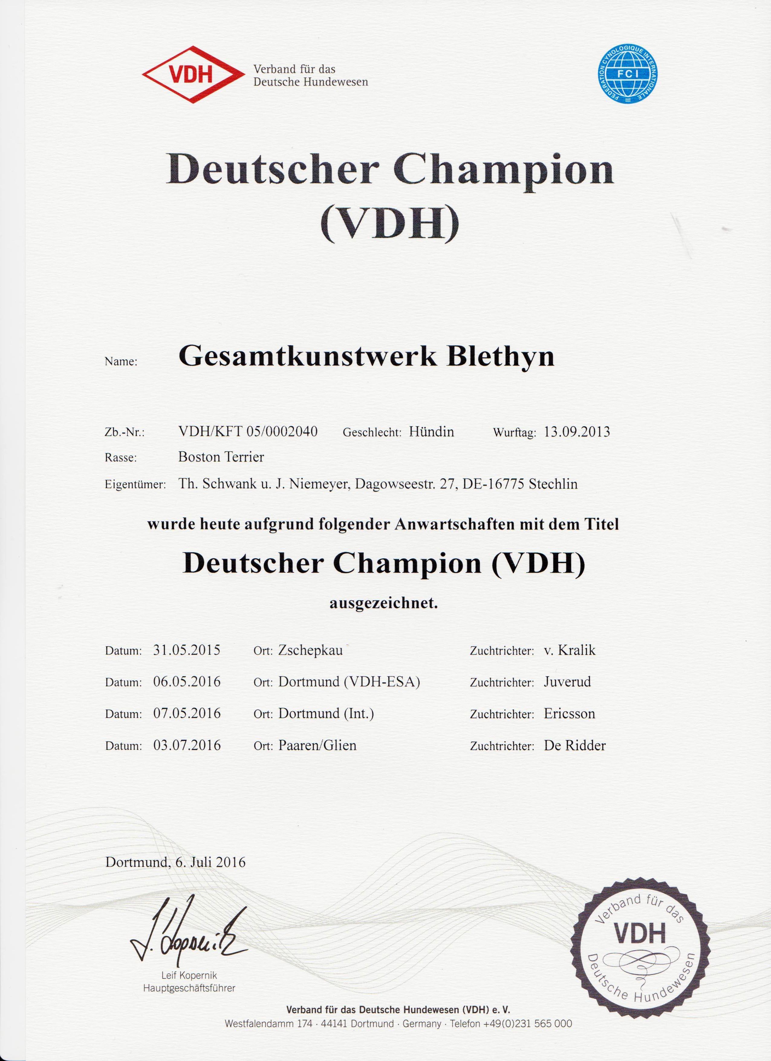 Gesamtkunstwerk Blethyn Deutscher Champion VDH_klein