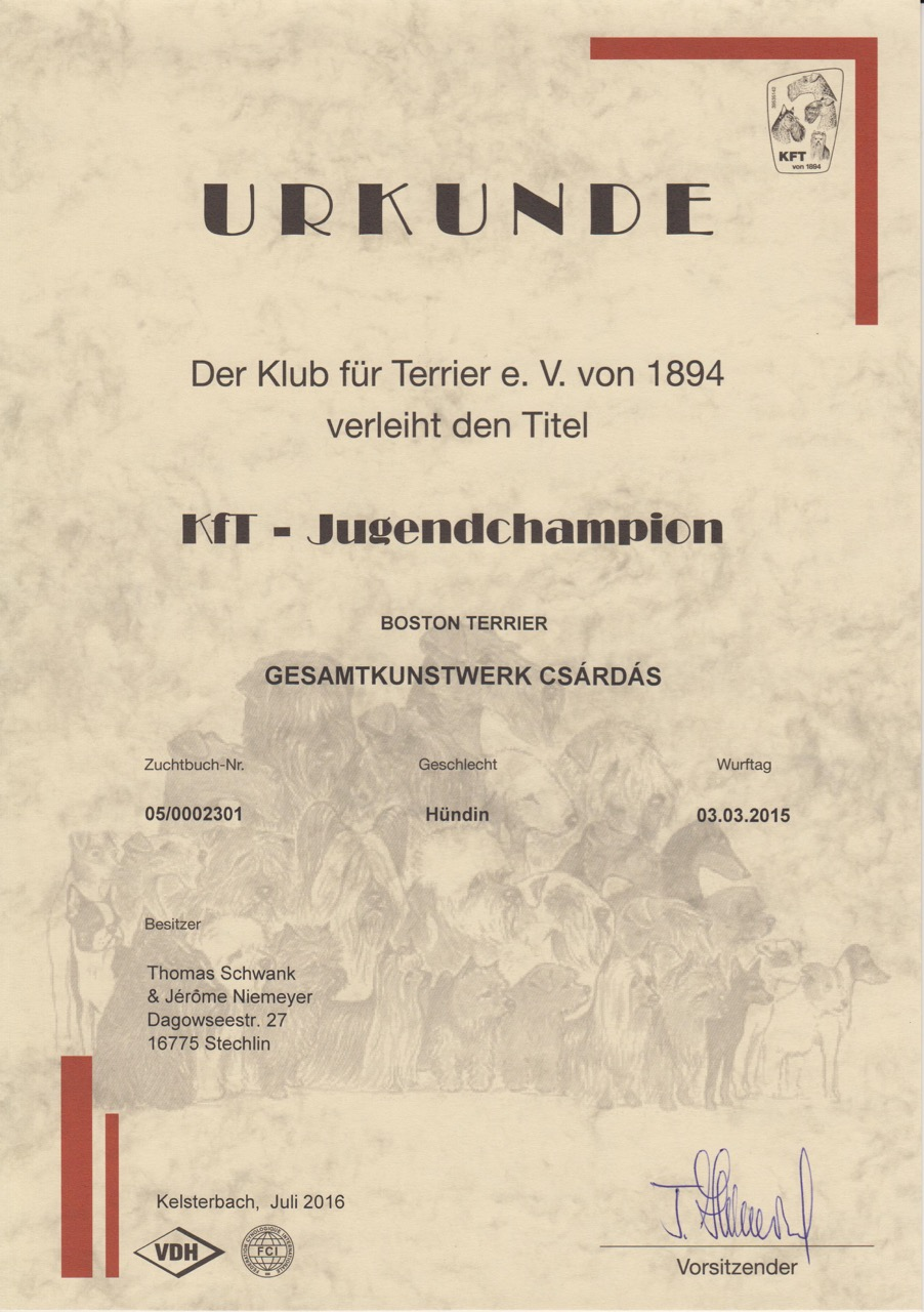 Csárdás Champions Jugend - 2