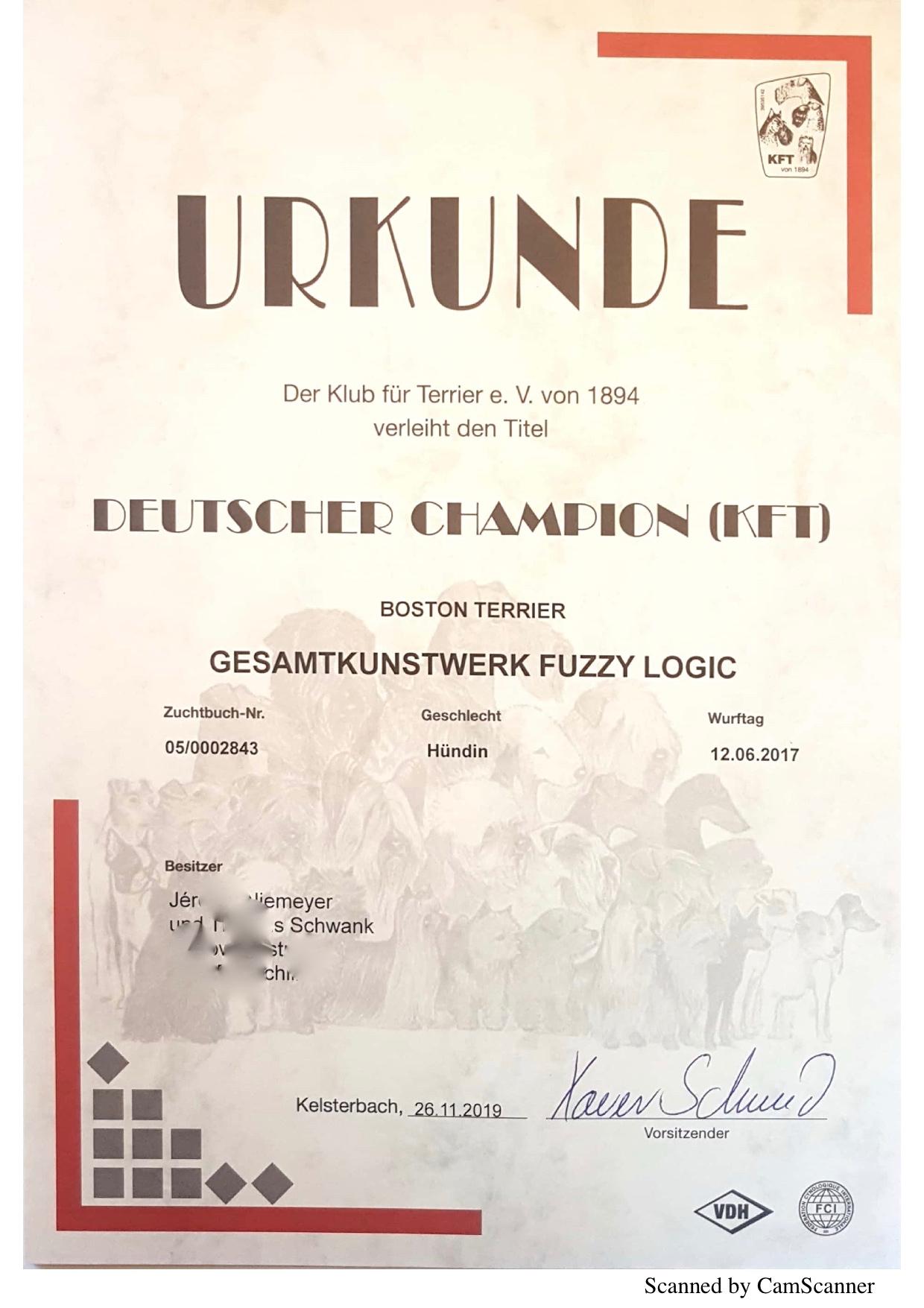 KFTChampionFuzzy2019 (1)